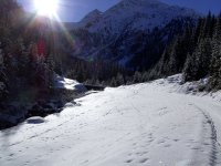 winter-osttirol1.jpg