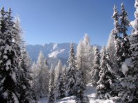 winter-osttirol10.jpg